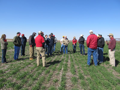 Cover Crop field day attendees