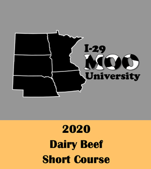 2020 Dairy Beef Short Course graphic