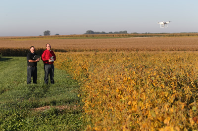 Crop scouts use UAVs