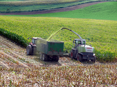 Silage Production