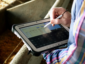 Person entering spreadsheet information using a tablet