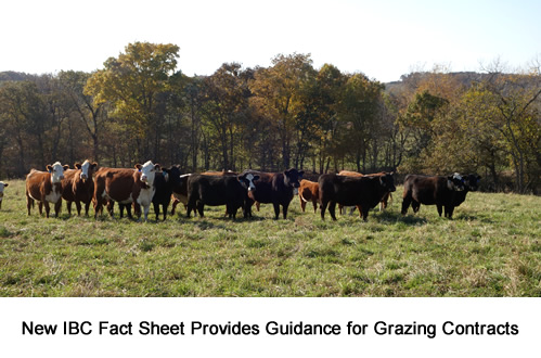 New Iowa Beef Center Fact Sheet Provides Guidance for Grazing Contracts